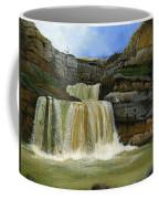 Mirusha Falls In Kosovo Coffee Mug