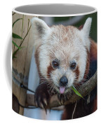 Mischievious Red Panda Coffee Mug