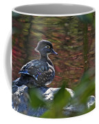 Missy Wood Duck Coffee Mug