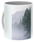 Mist Rises From An Evergreen Forest Coffee Mug