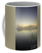 Misty Dawn 4.1 Coffee Mug