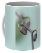 Misty Orchid Buds Coffee Mug