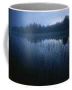 Misty View Of Taiga Forest Coffee Mug