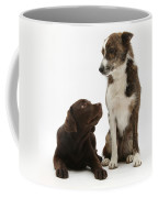 Mixed Breed And Chocolate Lab Coffee Mug