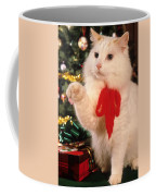 Mixed Breed Cat Reaches Out Coffee Mug