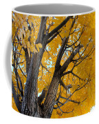 Moab Color Splash Coffee Mug