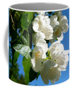 Mock Orange 4 Coffee Mug