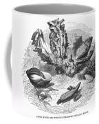 Mollusk Coffee Mug