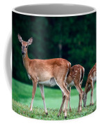 Mom With Twins Coffee Mug
