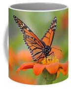 Monarch Butterfly Macro Coffee Mug