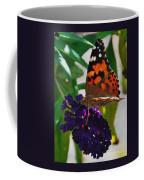 Monarch On A Black Knight Butterfly Flower Coffee Mug