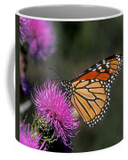 Monarch On Thistle 13f Coffee Mug