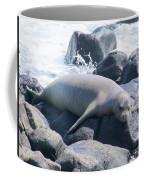 Monk Seal Coffee Mug