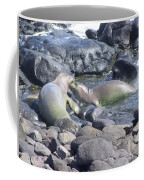 Monk Seals Coffee Mug