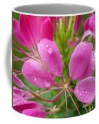 Morning Dew On Pink Cleome Coffee Mug