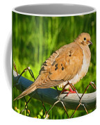 Morning Dove II Photoart Coffee Mug