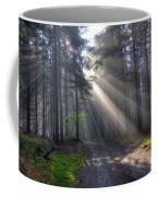 Morning Forest In Fog Coffee Mug
