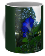 Morning Glory 01 Coffee Mug