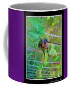 Morning Glory Beginning Coffee Mug
