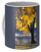 Morning Maple Coffee Mug by Rob Travis