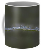 Morning Raindrops On Wild Grass Coffee Mug