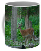 Morning Stroll 7353 1743 Coffee Mug