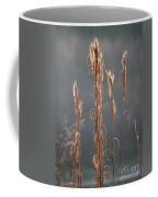 Morning Sunshine On Tall Reeds Coffee Mug