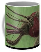 Mosquitos Head, Sem Coffee Mug
