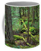 Moss And Fallen Trees In The Rainforest Of The Pacific Northwest Coffee Mug