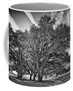 Moss-draped Live Oaks Coffee Mug