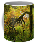Moss In The Forest Coffee Mug