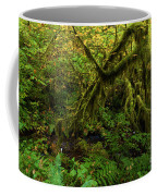 Moss In The Rainforest Coffee Mug
