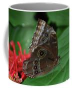 Moth I 2403 Coffee Mug