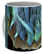 Moth Wing Scales Sem Coffee Mug