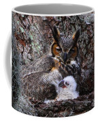 Mother And Baby Owl Coffee Mug