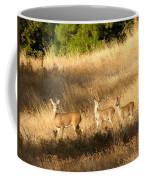 Mother And Twins Coffee Mug