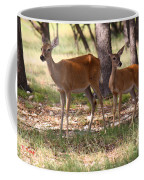 Mother And Yearling Deer Coffee Mug