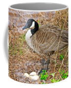 Mother Goose At Nest Coffee Mug by Susan Leggett