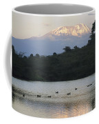 Mount Kilimanjaro Rises Above One Coffee Mug
