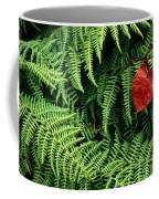 Mountain Bindweed And Fern Fronds Coffee Mug