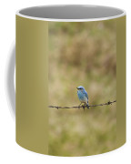 Mountain Bluebird On A Fence Wire Coffee Mug