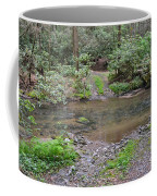 Mountain Road And Footbridge Coffee Mug
