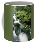 Mountain Stream Cascading Coffee Mug