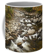 Mountain Stream In Autumn Coffee Mug