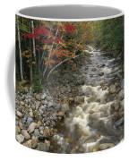 Mountain Stream In Autumn, White Coffee Mug