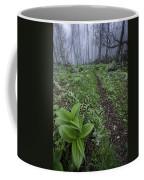 Mountains To Sea Trail Coffee Mug