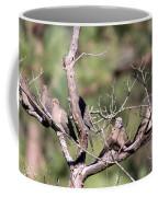 Mourning Dove - Board Of Directors Coffee Mug