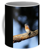 Mr. Bluebird Coffee Mug