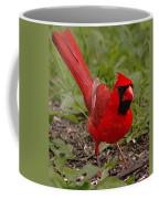 Mr. Obvious Coffee Mug