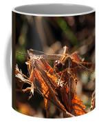 Ms Damselfly A La Fall Mode Coffee Mug